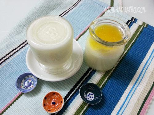 Cách làm sữa chua từ 100% sữa tươi ngon nhất 1